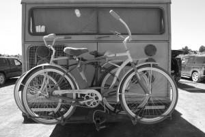 catbikesbus